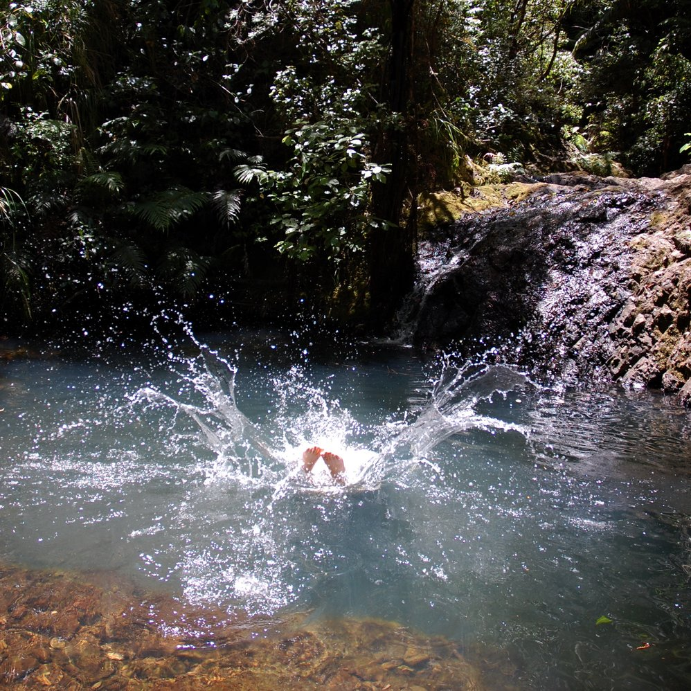 Swimming Hole, Great Barrier Island