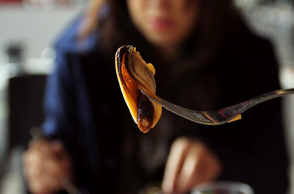 Mussel Memory