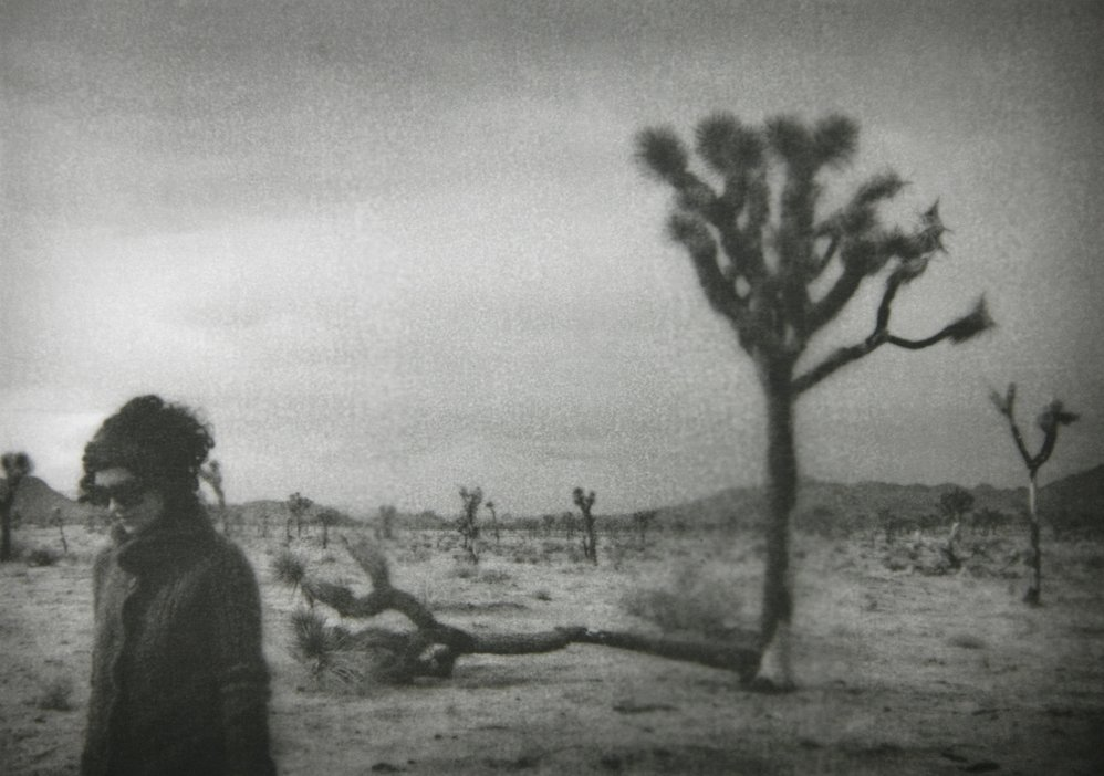 Julie and the Joshua Trees